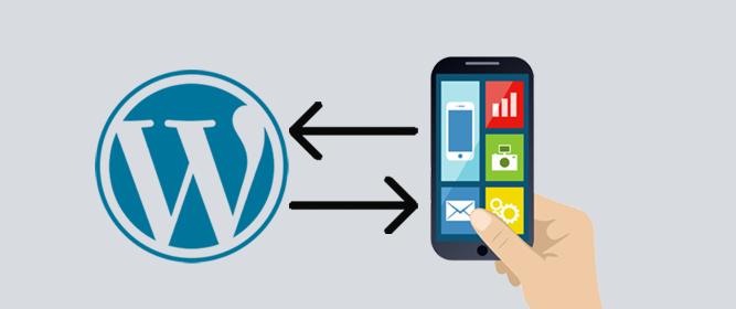 وردپرس و اپلیکیشن استفاده از وردپرس برای اپلیکیشنهای موبایل